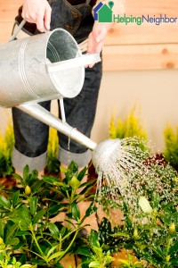 Best kept secrets for watering gardens